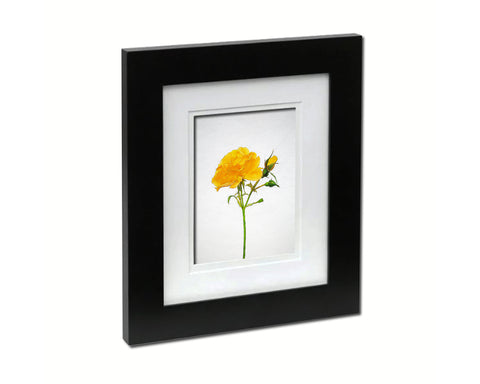 Yellow Rose Sketch Plants Art Wood Framed Print Wall Decor Gifts