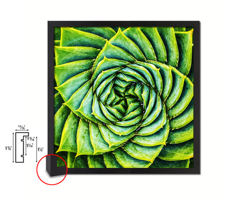 Aloe Succulent Evergreen Leaves Spiral Plant Wood Framed Print Decor Wall Art Gifts