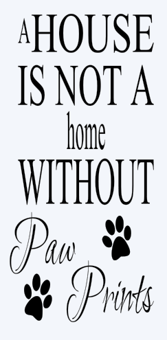22 - House without Paw Prints