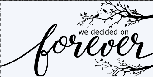 S 249  - WE DECIDED ON FOREVER