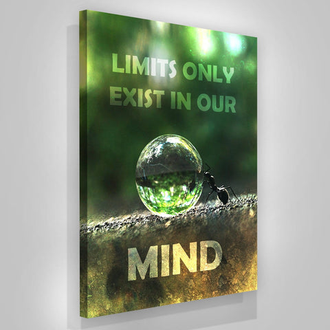 Limits Only Exist In Our Mind - Iceberg Of Success