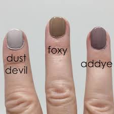 Acquarella-Dustdevil-Foxy-Addye