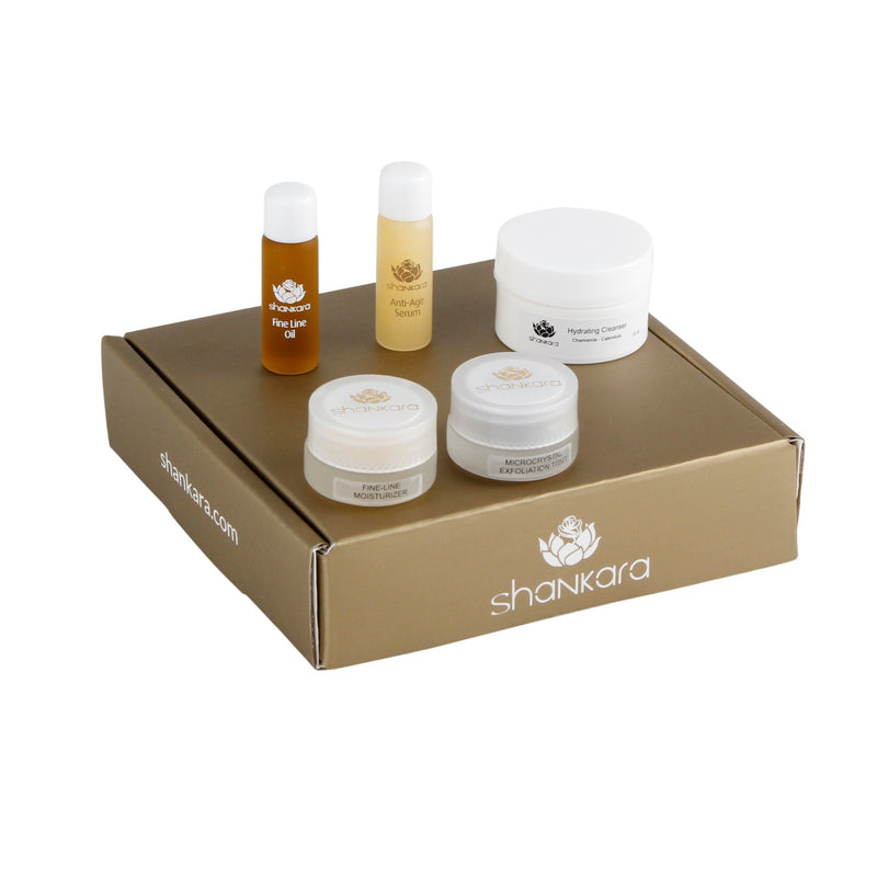Shankara Sample Box Dicht  Fine Line (Pitta) of Rich Repair (Vata)