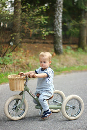 Basket for Trybike