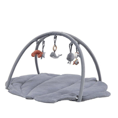 Activity Play Gym - Shell Blue