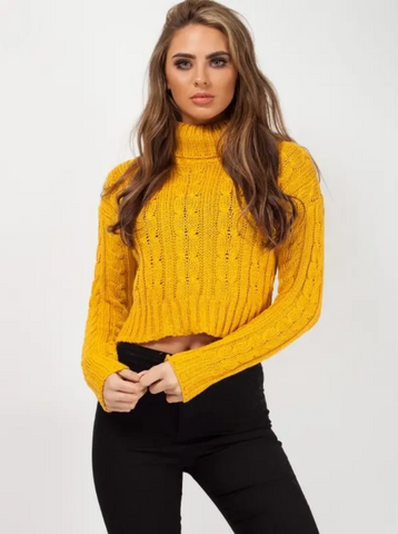 Mustard Roll Neck Cable Knit Cropped Jumper, Prettyrebel.com