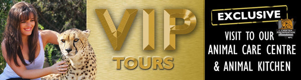 VIP TOUR OPTION 4 - FULL HOUSE