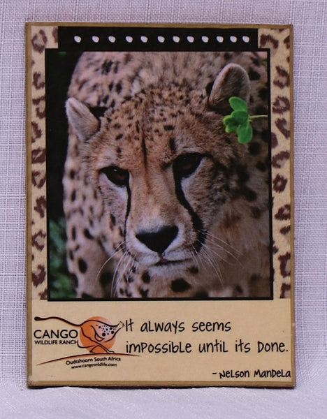 Fridge Magnet Messages - Cheetah Venus