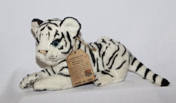 White Bengal Tiger:  My name is Taji