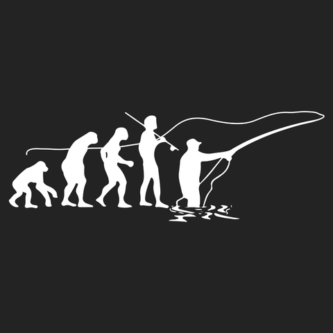 Fly Evolution
