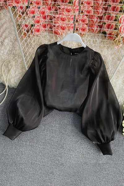 Gleamingly Organza Puff Sleeve Blouse