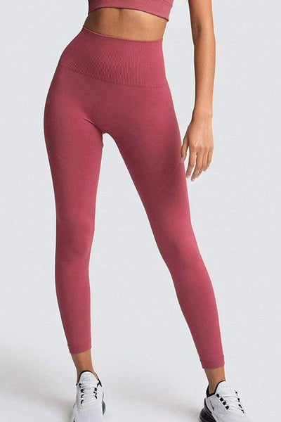 Solid Seamless Bra Leggings Set