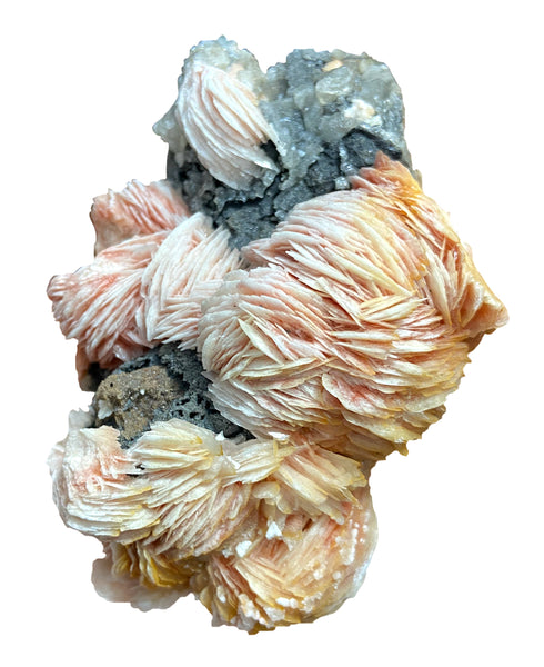 Barite Crystal on Cerussite with Galena - Perfect for transformation, facing fears, and overcoming difficulty to become our best self - Chakra Palace