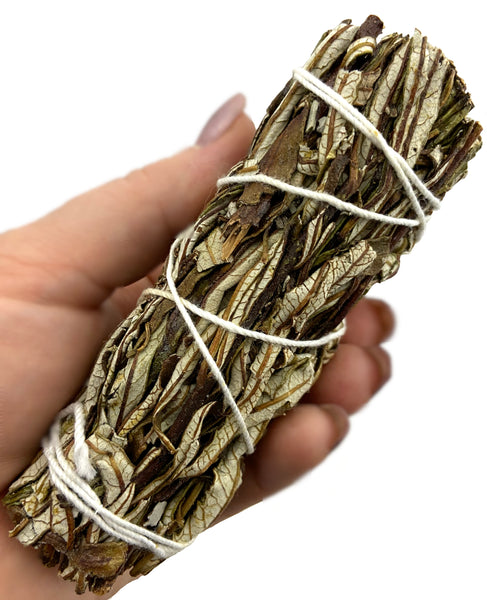 Yerba Santa Sage Smudge Stick - Burned for protection, healing, to honor ancestors, & enhance psychic abilities