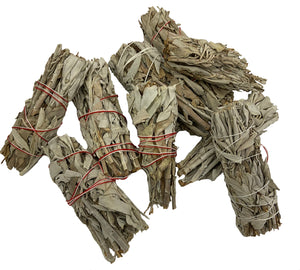 Sage Smudge with Unique Characteristics. Basically, its ugly. But can still smudge your home! Burning sage in the bible?