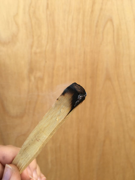 10 Palo Santo Wood Sticks - Perfect for smudging, protection, & removing negativity
