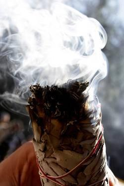White California Smudge Sage - 8-9 Inches - Perfect for banishing negativity and creating a peaceful environment!