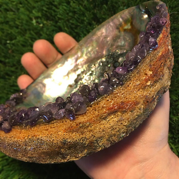 "Large Abalone Shell Adorned with Amethyst Chips - 6 - 6 & 1/2""Abalone Shell Great for a Smudging Bowl"