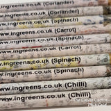 Newspaper Seeded Pencils for Writing Pack of 5