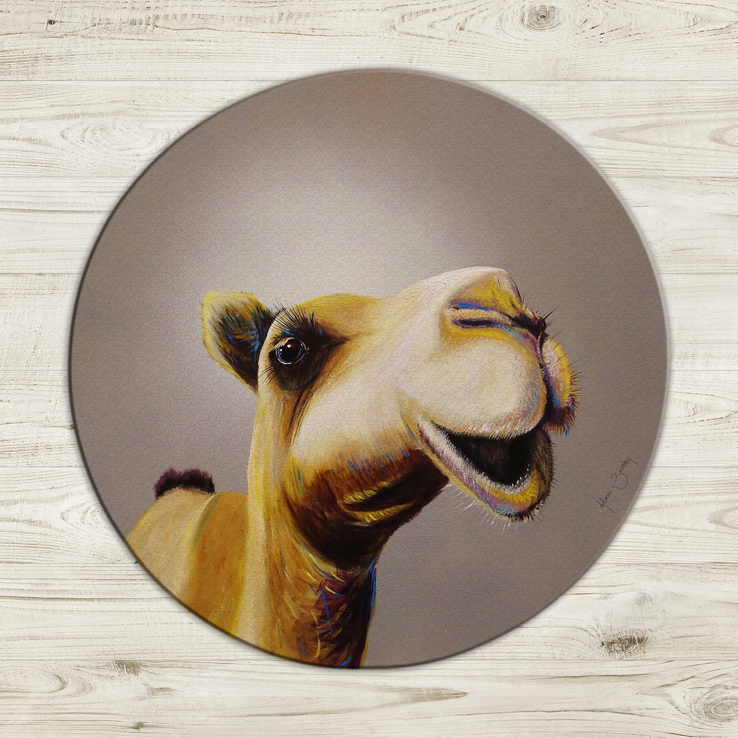 Don't get the hump! Glass worktop saver