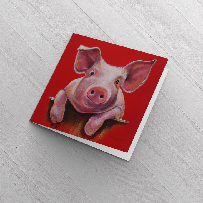 Little Piggy 6 x Greeting Cards