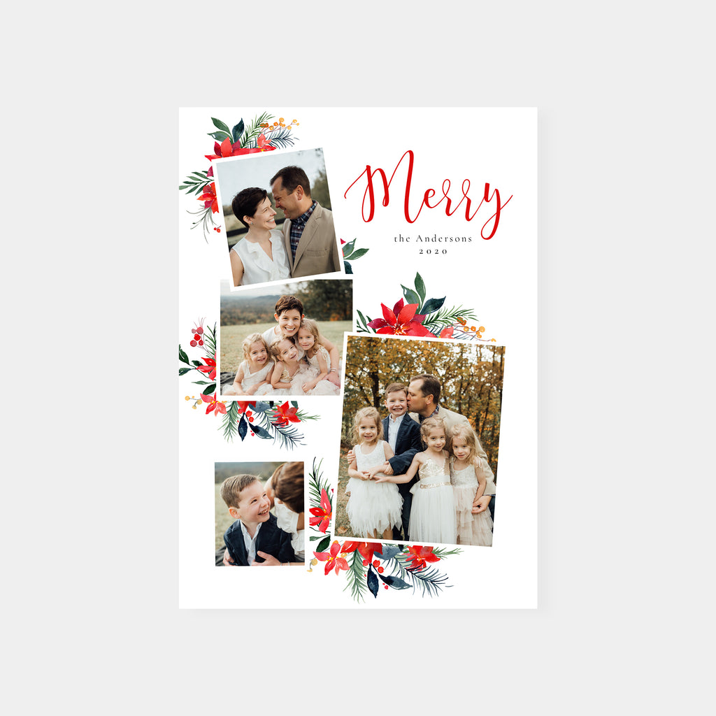 Christmas Garden - Holiday Card-Template-Salsal Design