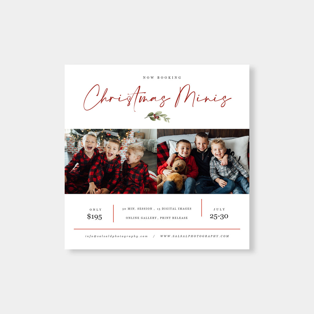 Berries Leaves - Christmas Mini Session Template-Template-Salsal Design