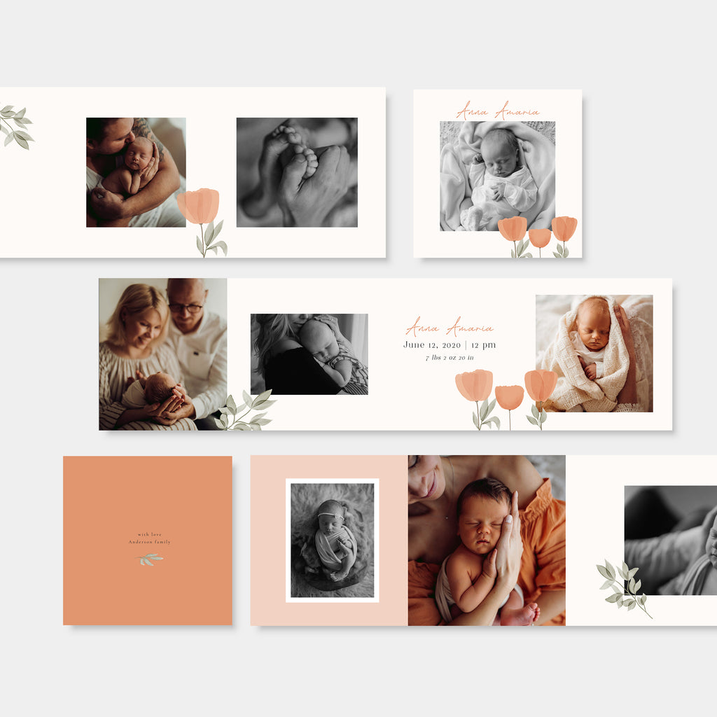 Sunrise - Newborn Mini Accordion Album Template-Template-Salsal Design