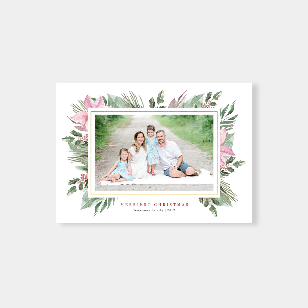 Pink Poinsettia - Christmas Card - Salsal Design