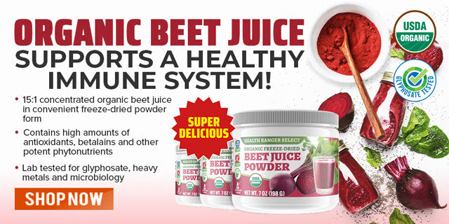 Beet Root Powder - SFG Wellness | Health Ranger Store