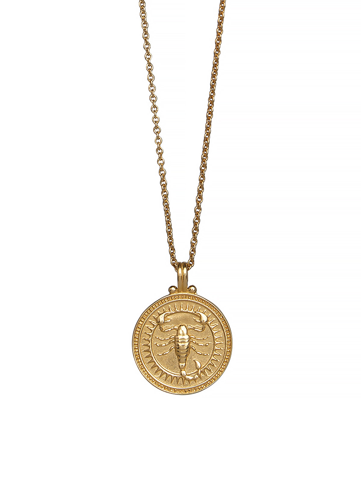 Scorpio Zodiac Horoscope Necklace Gender Neutral Gold Vermeil 蠍座 星座