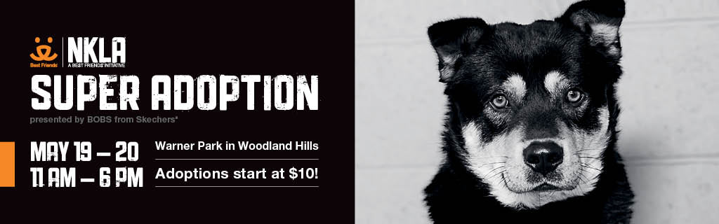 Join us at NKLA's SUPER ADOPTION May 19-20!
