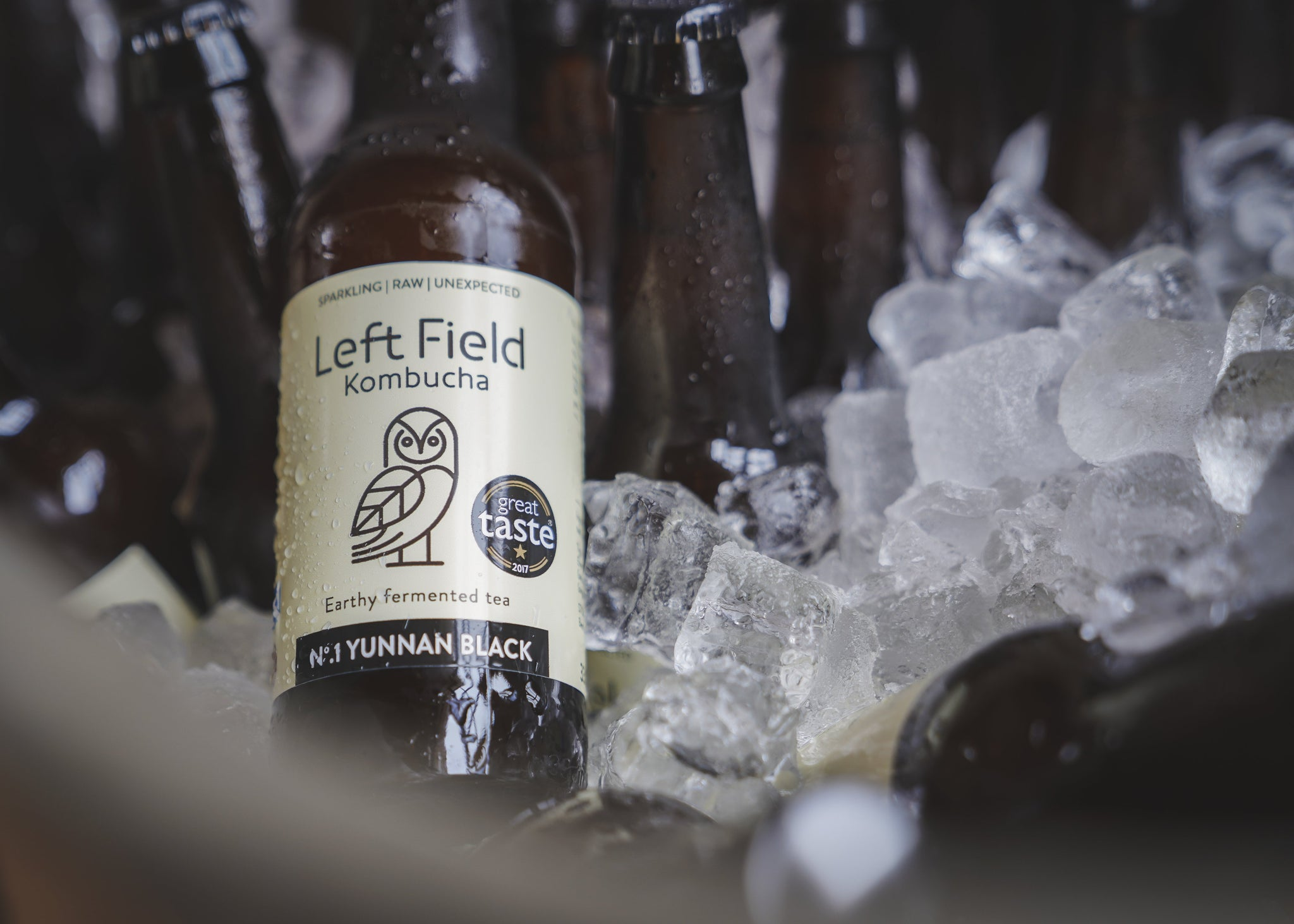 Great Taste Award winner 2017: Left Field Kombucha