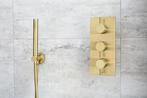JTP brushed brass hand shower attachment and controls