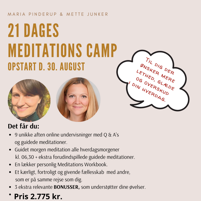 21 dages Meditations Camp