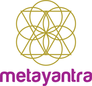 Metayantra Consciencia