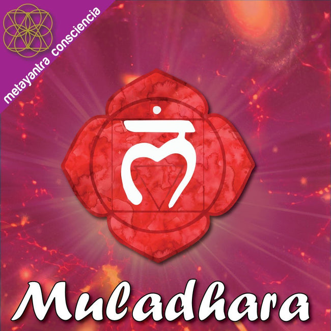 Isochronic Binaural Tone for the First Chakra Muladhara - Metayantra Consciencia