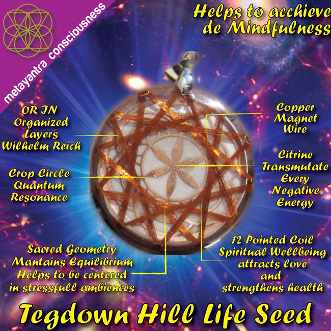 Seed of Life Tegdown Hill Crop Circle Vortex - Metayantra Consciencia