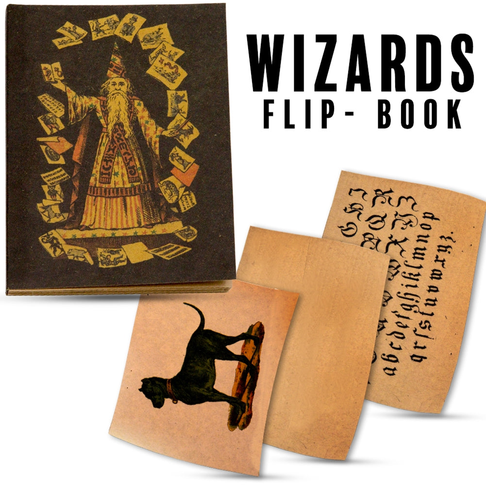 Wizards Flip Book