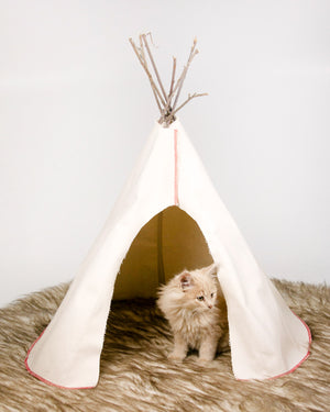 Pet or Doll Play Tipi