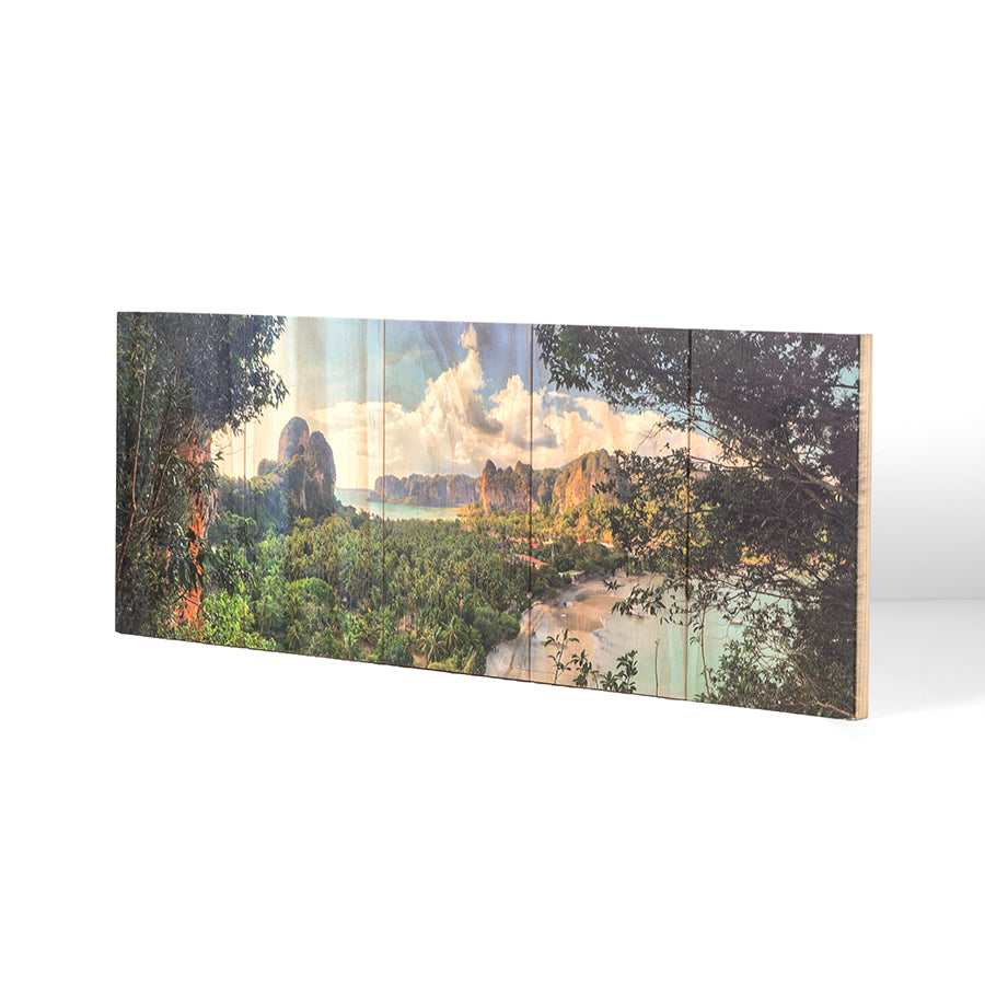 10.5 x 27.5 Panoramic Planked Wood Print