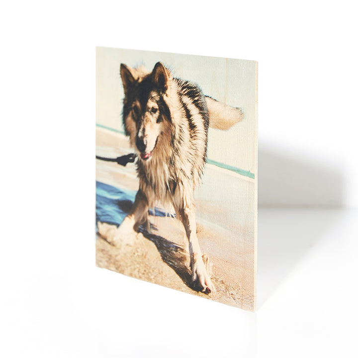 7 x 7 Wood Print - Pictures on Wood