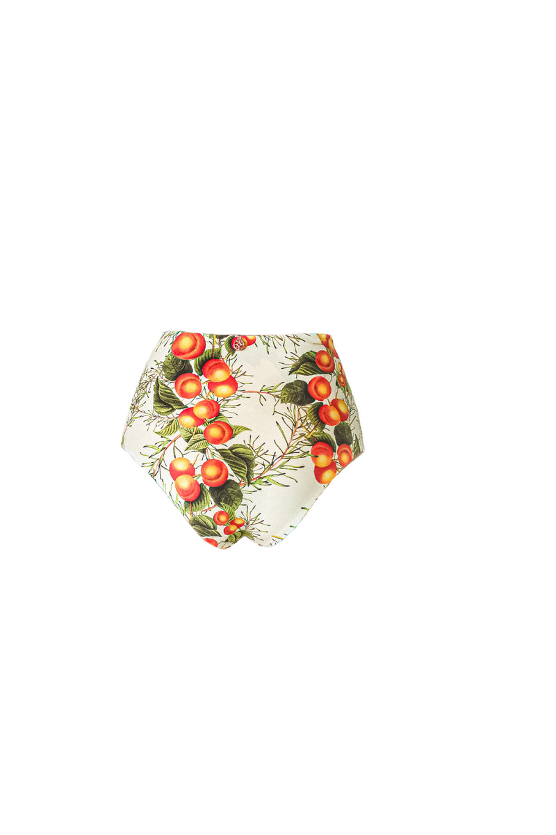 GALENE Peaches HIGH WAIST panty