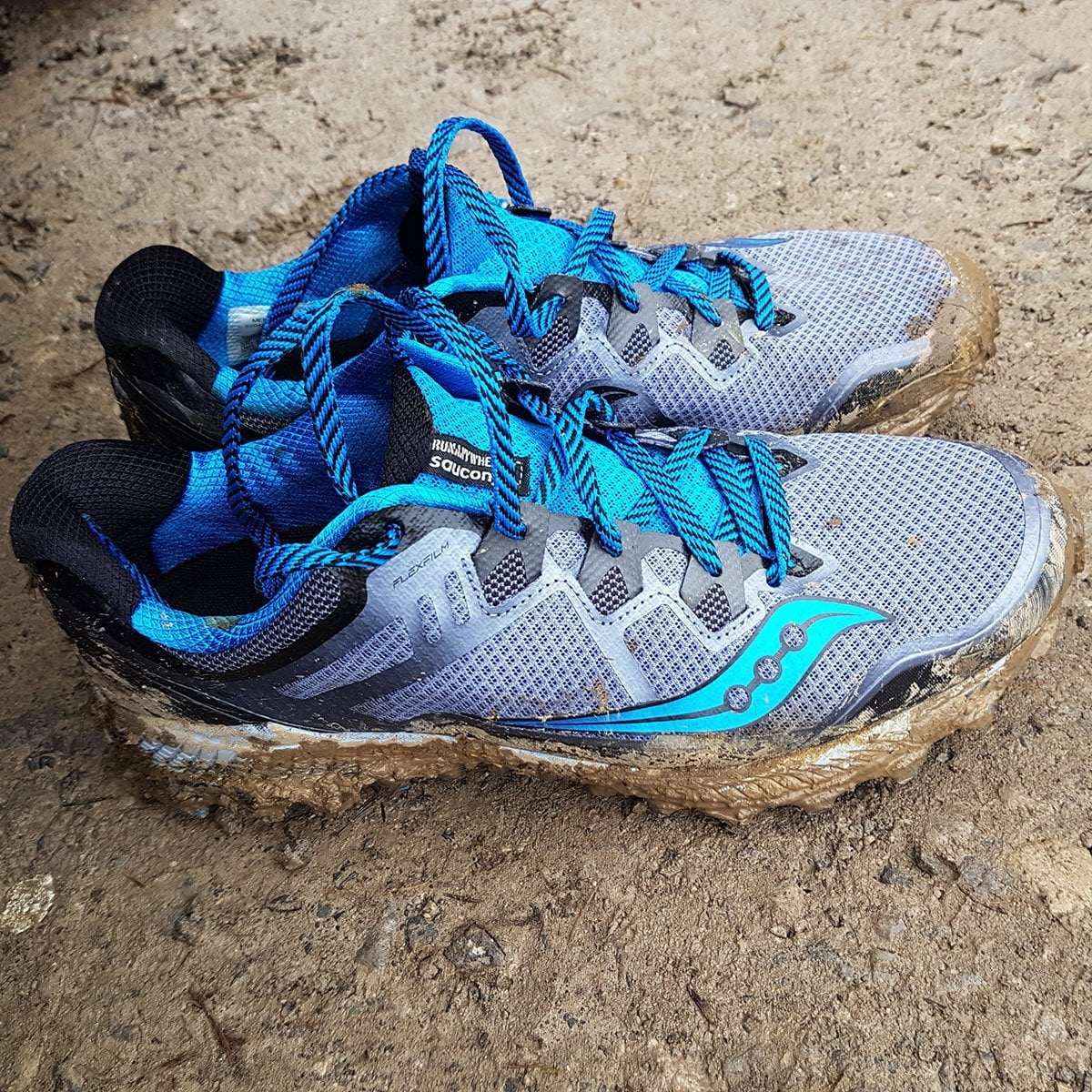 Saucony Peregrine 8 Trail Shoe Review and Rating