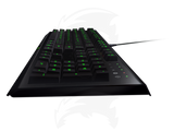 Razer Cynosa Pro Bundle Gaming Wired Mouse and Keyboard