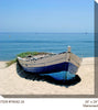 Marooned All Weather Outdoor Canvas Art  - Soothing Company