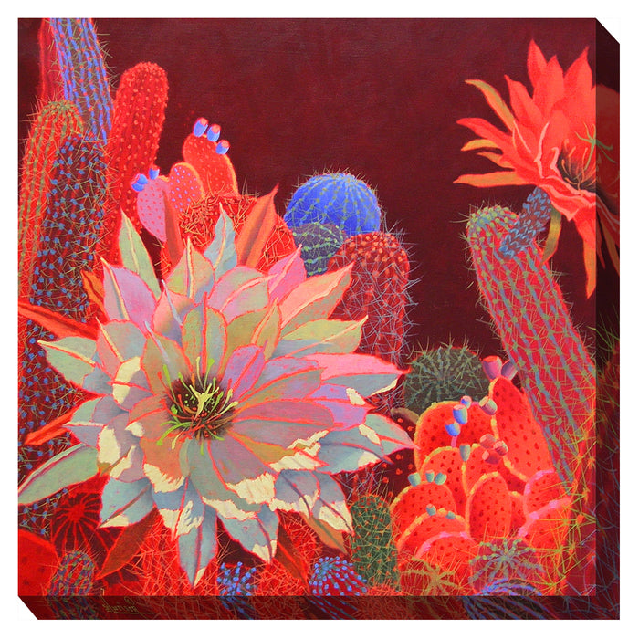 Desert Red Outdoor Canvas Art  - Soothing Company