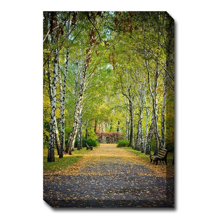Birch Trail Canvas Wall Art - Outdoor Art Pros