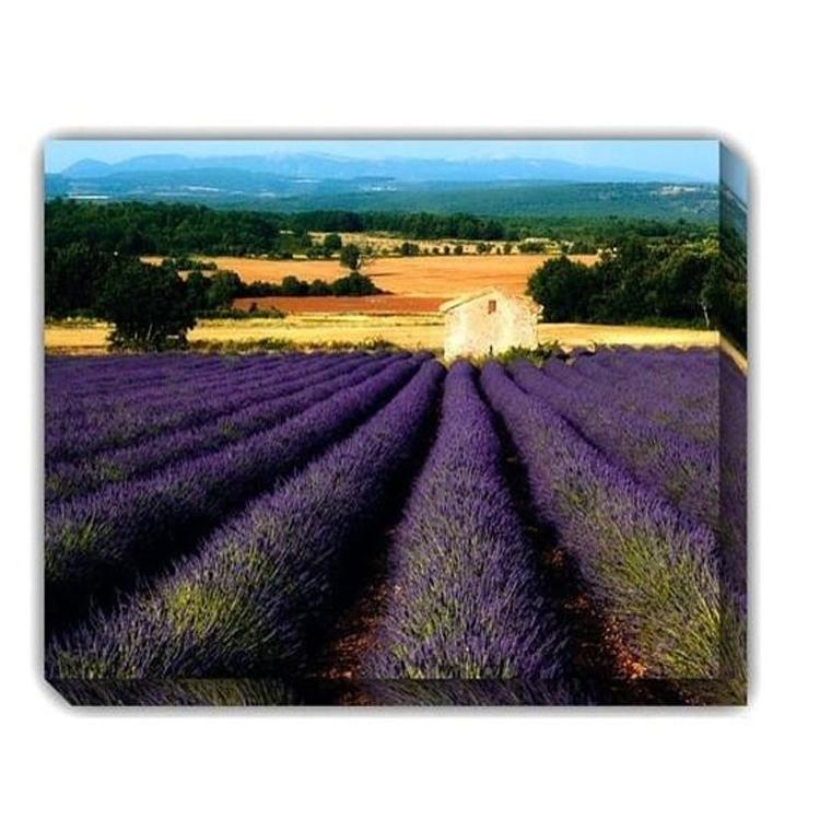 Cabanon Outdoor Canvas Art - Outdoor Art Pros