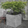 //cdn.shopify.com/s/files/1/2507/6008/products/Chenes_Brut_Garden_Box_Planter.jpg?v=1527155945